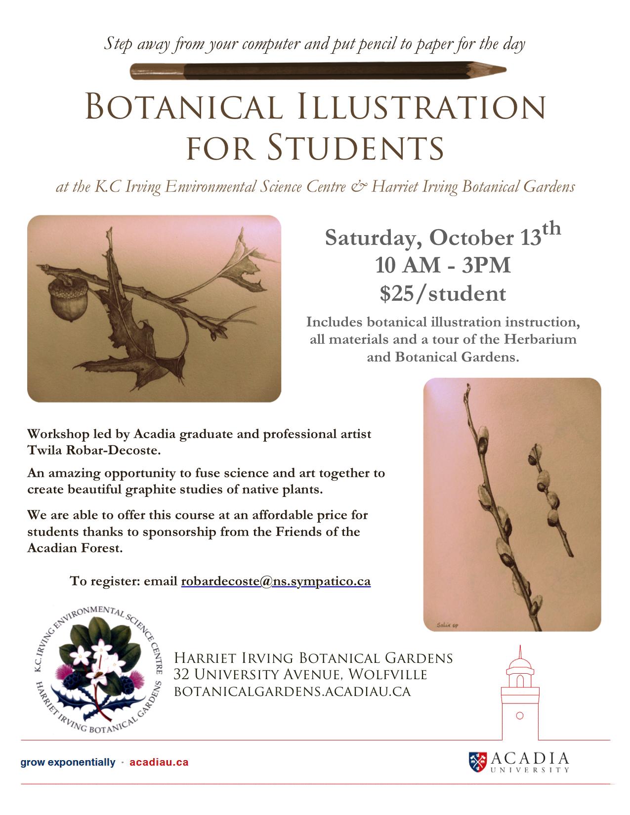 Botanical Illustration For Students At Harriet Irving Botanical